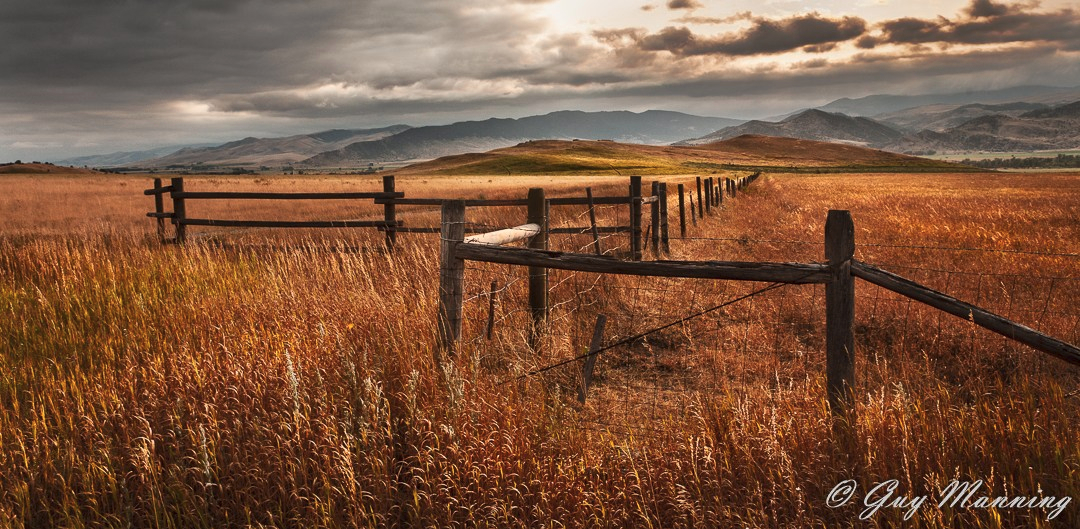 The Fence Line, Paradise Valley, Montana.